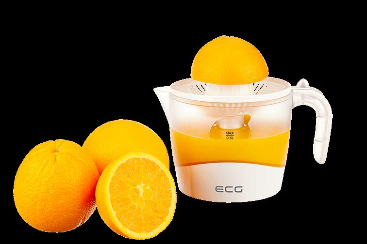 ECG OC 38