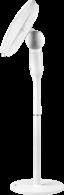 ECG FS 410 2in1